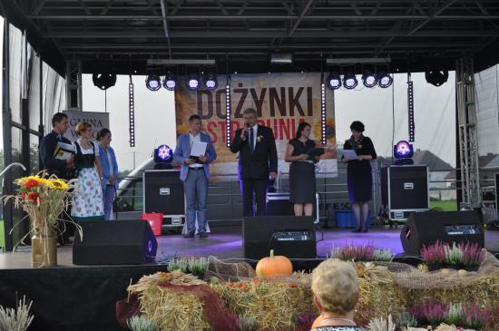 Galeria Dożynki Gminne 2014 - Stradunia