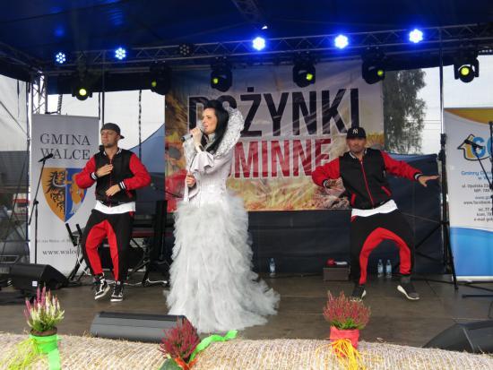 Galeria Dożynki 2017 -występy
