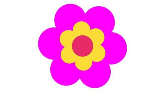kwiatek.jpeg
