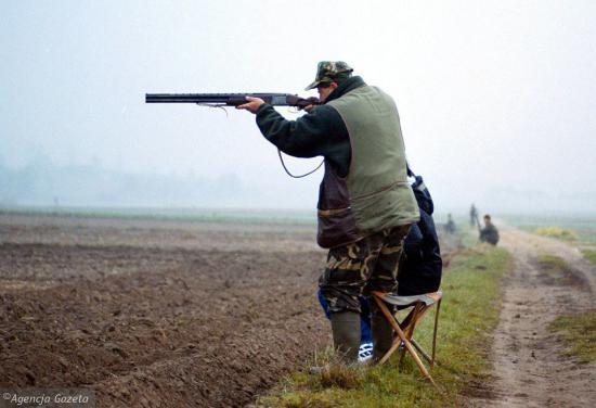 polowanie.jpeg