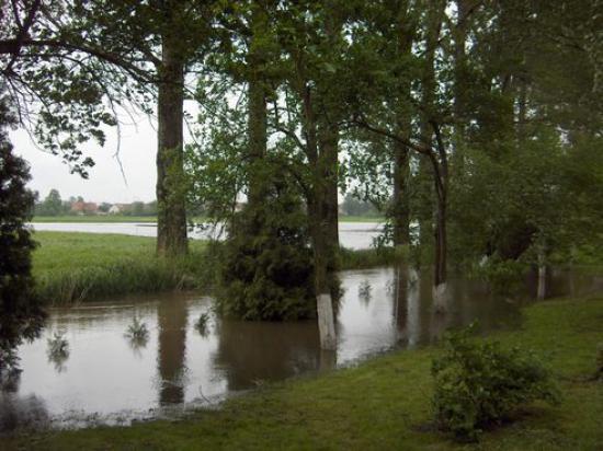 Powódź 2010 016.jpeg