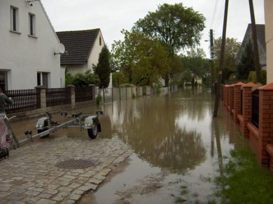 Powódź 2010 031.jpeg