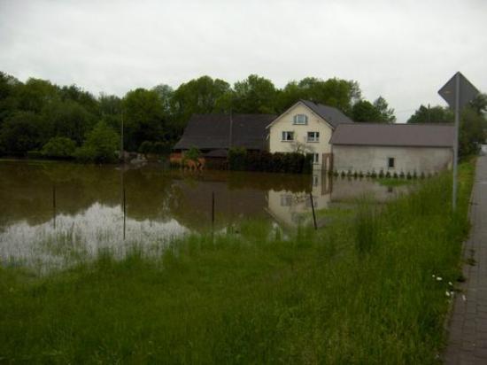 Powódź 2010 033.jpeg
