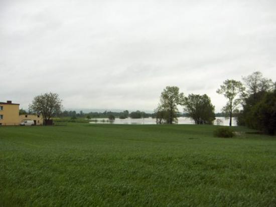 Powódź 2010 034.jpeg