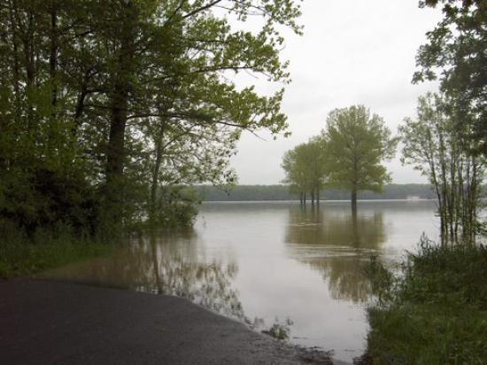 Powódź 2010 041.jpeg