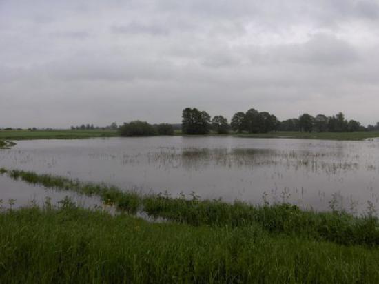 Powódź 2010 042.jpeg