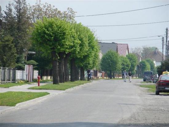 Galeria ROZKOCHÓW